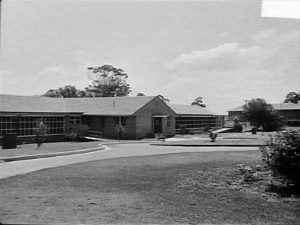 Wards 24a and 24b-1961